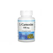 Natural Factors L-Carnosine 500mg 60 veg caps
