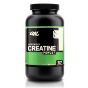 Optimum Nutrition MICRONIZED CREATINE Powder 300g