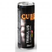 POWER PRO TRIBULUS 250ml (слива)